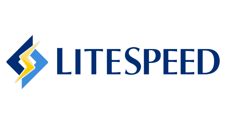 LiteSpeed Nedir?