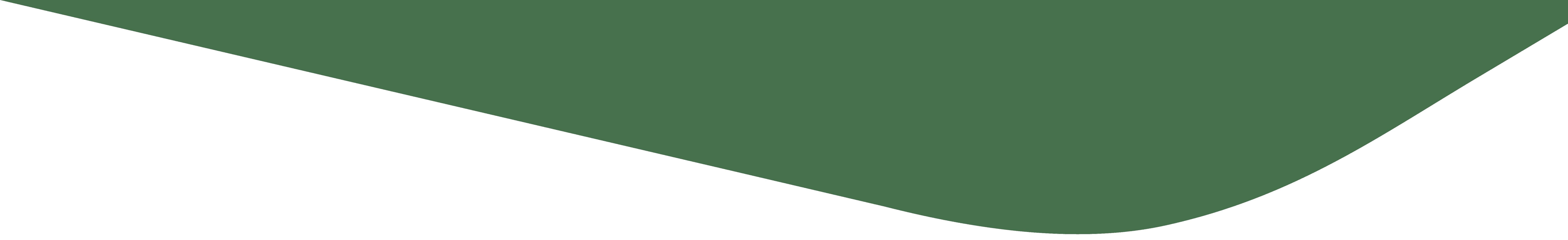 Web Tasarım / Yazılım